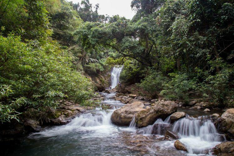 The waterfall has a consistent, bountiful flow of water throughout the year. Located in a primary forest, it presents great potential for adventure tourism.